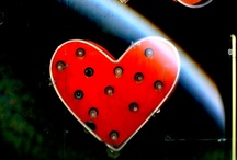 Hart to Heart / by June Hart