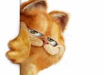 """It's all about the """"Cat"""" / by Cindy Courter"""