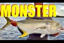 2012 Fishing Videos / by MulletRun Fishing