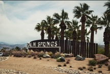 Pin a Trip with American Apparel Contest  / Ideal spring break with American Apparel wear. A road trip to the middle of nowhere with the surrounding of mountains and sunshine kisses.