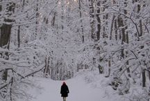 Winter / I'm from Colorado, I love winter!