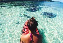 summer / surfs up -