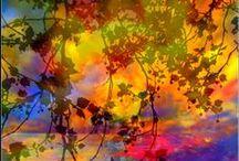 Beautiful! / by Ashley Christine