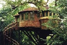 tree houses / by Cathy Beaudoin