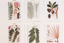 printables / by Aimee