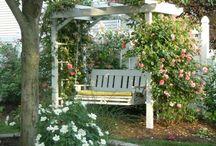 Outdoor Ideas / by Susan Ellis