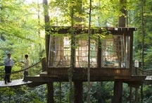 Treehouses / Much more on the Luscious website including http://mylusciouslife.com/luscious-loves-treehouses/