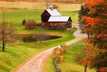 barns / by Cathy Beaudoin
