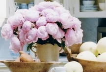 florals... / by The Boutique 411