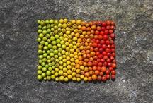 colours&textures