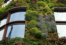 Vertical Gardens and Walls / Just about #green vertical walls and #gardens!