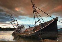 Shipwreck / by Jenni Brummett