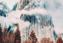 Serene Winter ❅ / Serene snow scenes & Winter delights.