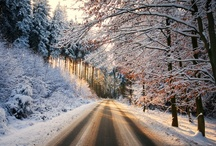 Dreamy Winter Wonderland / Winter is a time where new beginnings happen. A time where everyone gets a new start. A time when memories are made. A time that should be unforgettable. / by Julia Wright