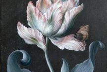 -{ botanical & vintage illustrations }- / Botanical illustrations and art