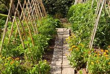 -{ kitchen garden }- / Food gardens, kitchen gardens, herb gardens, potagers