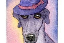 Dogs in head gear