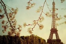 ❤Paris , my lovely Paris❤ / by Nasim