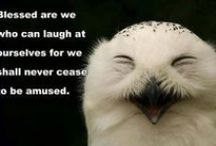 Laughter is the best medicine / by Gwendolyn Barnhard