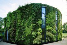 -{ vertical gardens }- / Vertical gardening -  a hot trend