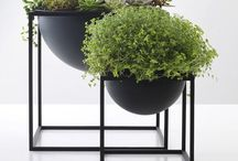 -{ container garden }- / Pot plants and stylish outdoor planters