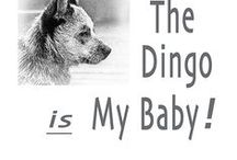 "For Our ""Furry"" Babies / by Christine Pickett"