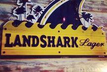 Landshark / My favorite beer / by Stacey Mullen