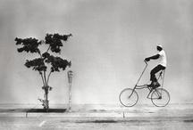 Bicicleta/Bike/Velo / by Jean-Claude Delettrez