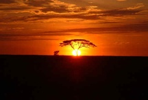 Inspiring Africa