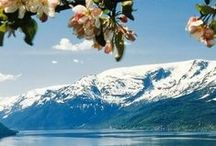 Miljövänlig Smekmånad / Tips på miljövänlig smekmånad! [Eco-friendly Honeymoon Destinations.]