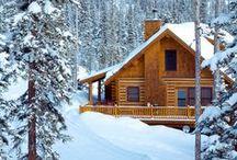 Snowscapes / by Lynn White