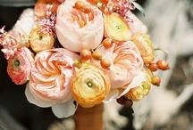 Tangerine Wedding / by Munaluchi Bride