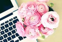 tips | blogging + social media / tips, tricks, and tutorials for blogs and bloggers