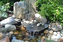 Garden: Ponds & Water Features