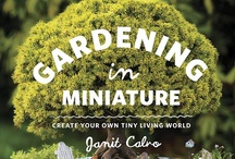 Miniature Gardens & Bonsai