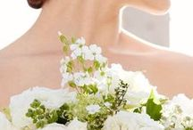 Modern Bride / Start planning your dream wedding on a budget with JCPenney's Modern Bride Wedding & Engagement Jewelry. Browse beautiful wedding inspiration, bridal ideas, engagement ring designs and more.