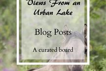 Views From an Urban Lake Blog Posts / A showcase for all my blog posts. Featuring Outdoors posts, Hiking Blogs, Geocaching pages, Camping posts, Outdoors gear reviews, Outdoor Wellness With... posts and more.