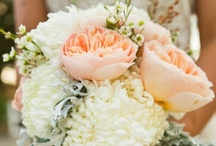 Wedding details / by Shannon Playl