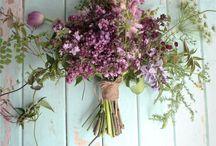 Floral / by Tegan Swanborough | Blossom & Twine