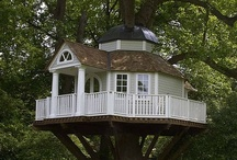 A Home in the Treetops / Someone told me I was immature. Guess who's not allowed in my treehouse now???