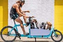 {group} Dogs & Bicycles Everywhere • pics of dogs in, on or near bicycles ☺ / Dogs & Bicycles - with an emphasis on S A F E T Y & comfort (for the dogs!). Please DO NOT add others to this board. Spammers will be fed ... uhmm ... to the dogs / by Dogs & Bicycles