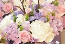 Springtime Weddings / by Meadow Wood Manor