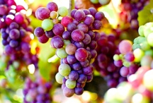 Grapes / by Shirley Weston