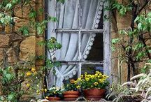 Windows and doors <3