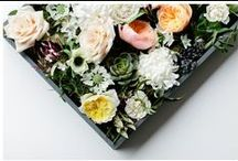 Florals / Floral inspiration.  / by Portraits To The People