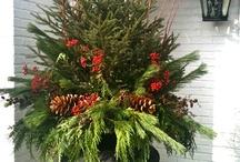 Holiday Decor / by Mary Rose