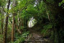 Ireland - Dream places to go / Eendag gaan ek nog soontoe gaan...