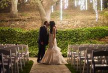 Wedding Ideas / everything about wedding