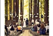 Wedding Ideas / by Hannah Ross