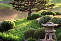 gardening in bulk